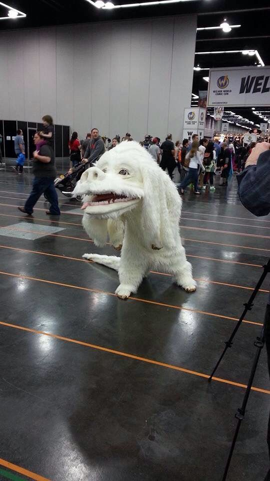 Valkor costume from The Never Ending Story. Portland Comic Con 2015