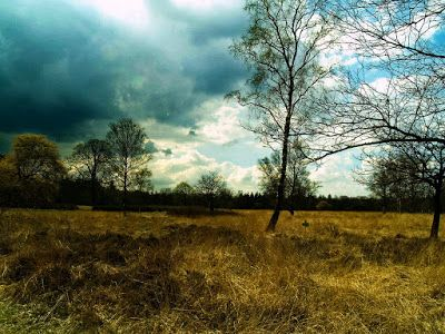 Ruud's natuurblog: landschapsfoto's in het nationaal park De Hoge Vel...