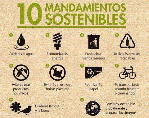 Sustentabilidad NOW