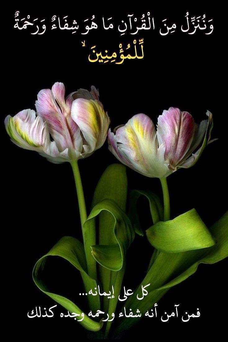 قرآن كريم آية وننزل من القرآن ما هو شفاء ورحمه للمؤمنين Prayer For The Day Quran Prayers