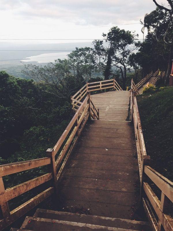 VSCO - Picnic Grove | Tagaytay  | cristaley
