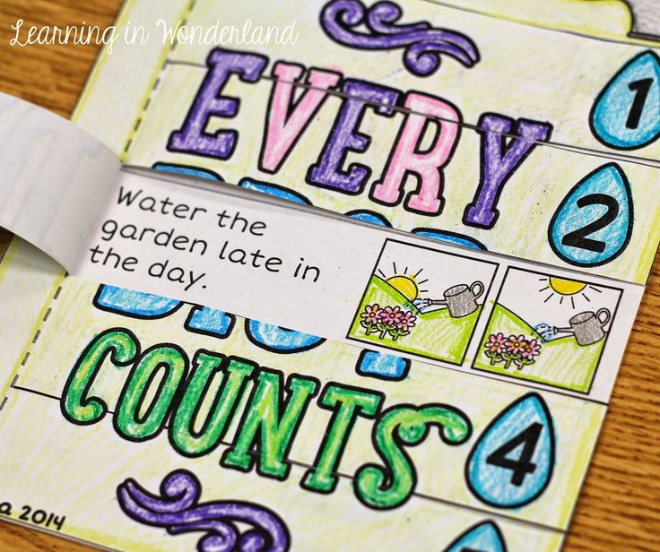Every Drop Counts - Water Conservation Activity
