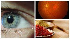 Cientistas descobrem tratamento natural para a perda da visão pela idade   Cura pela Natureza