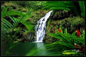 Waimea Falls, Oahu, HI: Hit Hawaii, Easiest Places, Favorite Places, Oahu Hawaii, Beautiful, Hawaii Trips, I'M Done, Places I D, Waimea Fall
