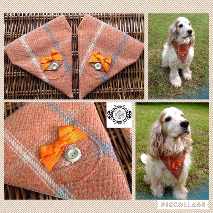Lilly Dilly's handcrafted bespoke dog ring bearer neckerchief #wedding #dog #ring bearer #animal #bespoke #neckerchief