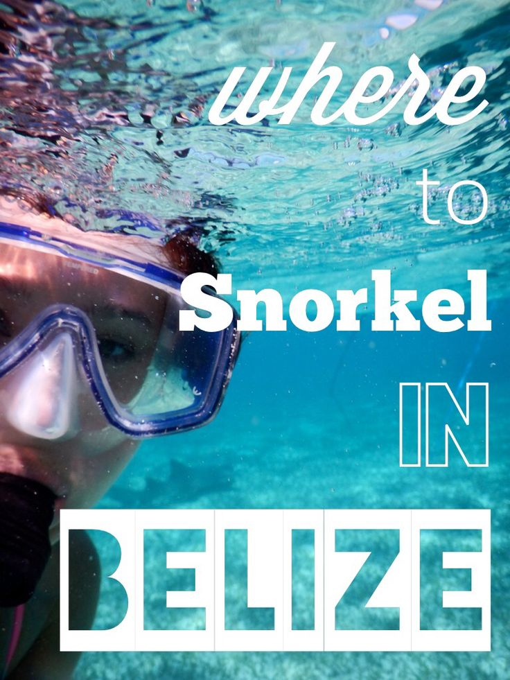 tiffany and co au Where to snorkel in Belize gt gt a fantastic guide
