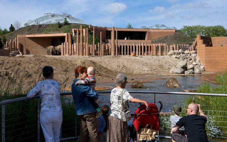 Elephant House, Copenhagen Zoo   Projects   Foster + Partners
