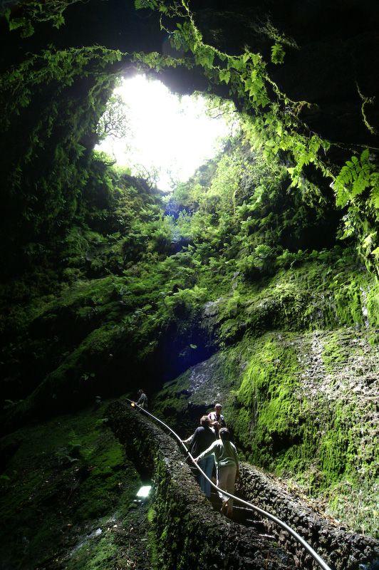 Algar do Carvão (Terceira Island - Azores/ Portugal) - a truly magical place :-) a journey inside a vulcano