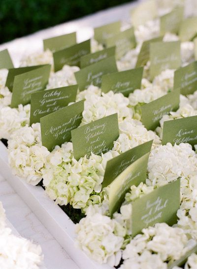 Sage green escort cards | Photography by Lisa Lefkowitz / lisalefkowitz.com, Wedding Planning by Kristi Amoroso Special Events, LLC / kristiamoroso.com, Floral Design by Radeff Design Studios / radeffdesignstudios.com/