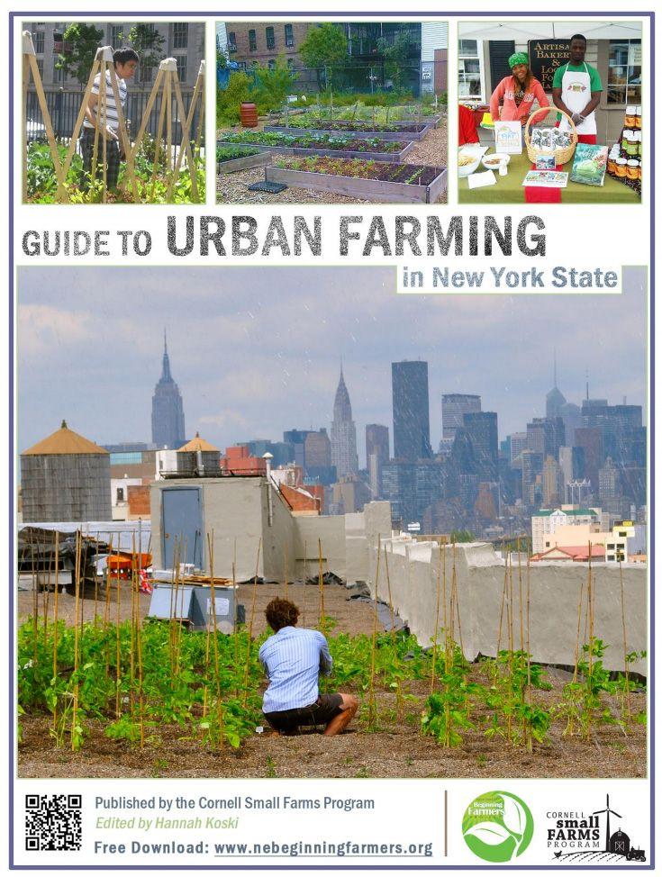 33 best ideas about Urban Farming on Pinterest | Gardens ...