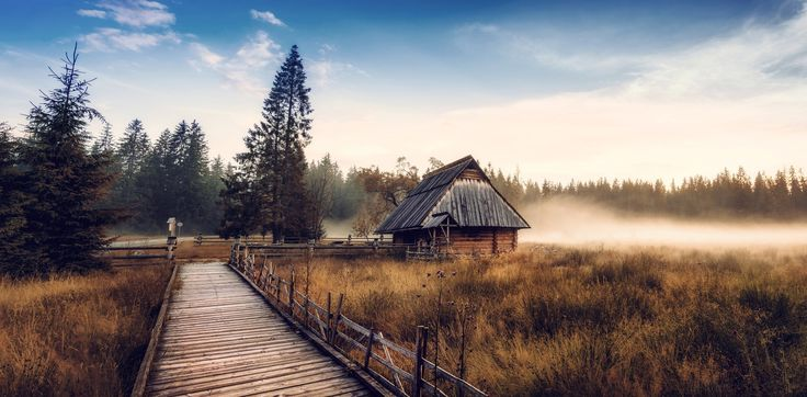 General 2048x1008 nature landscape cabin mist fall forest walkway dry grass pine trees