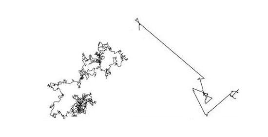 Brownian Motion v. Levy Flight