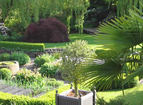 same yorkshire town garden by john brookes stunning shapes and foliage contrast