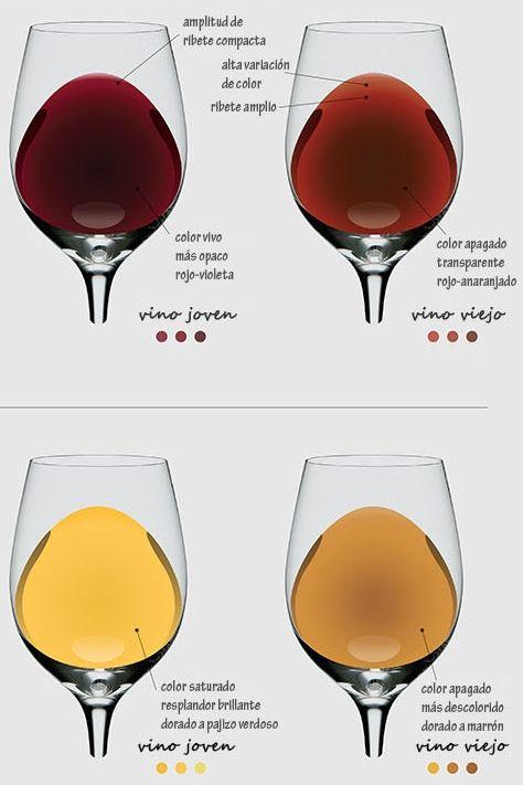 Claves para descubrir la edad de un vino por su color