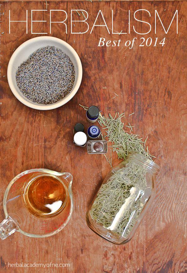Herbal Remedies round up - Best of 2014 DIY Articles