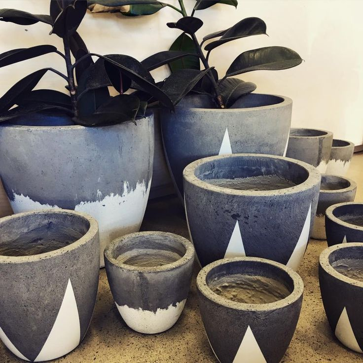 Concrete planter at Minta & Co.