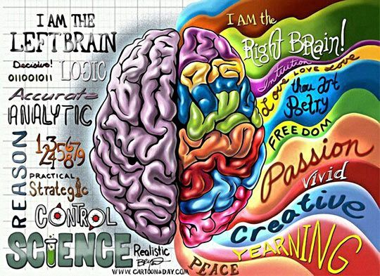 Which One Do You Use More? Eye-catching graphic depicts the main functions of our left brain and right brain. #iheartcd