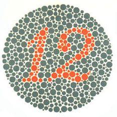 Ishihara Plate 1 of 38