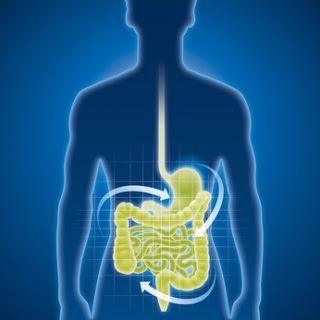 HomeoCity: Gastrointestinal Disorders