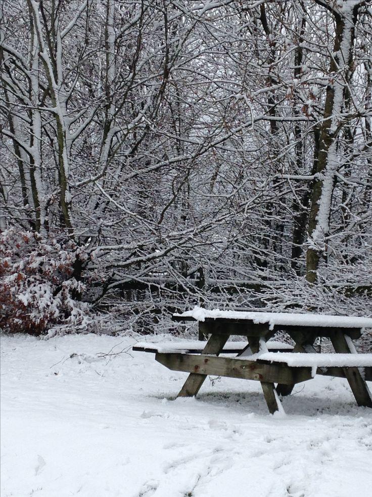 Typical winter scene in Cumbria x