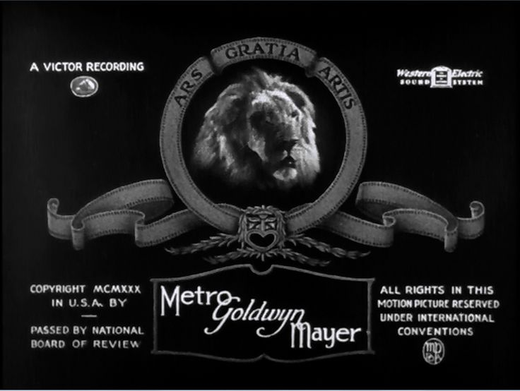 Metro Goldwyn Mayer Television | Image - Metro Goldwyn Mayer Logo 1926.PNG - Logopedia, the logo and ...
