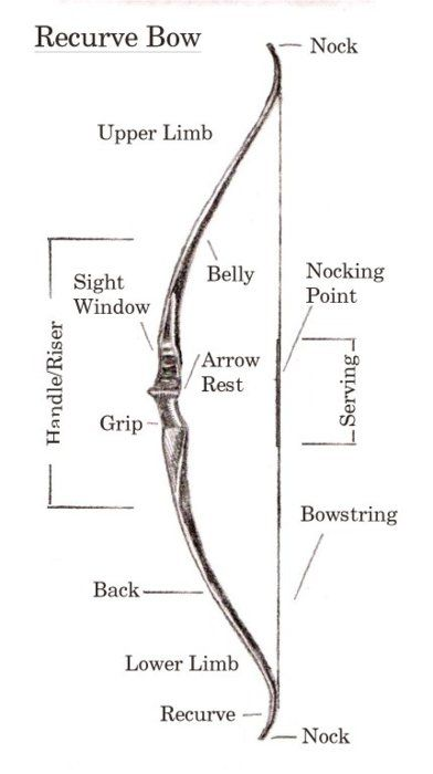 47 Best Archery Images On Pinterest Arch Arrows And Arrow