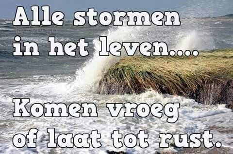Alle stormen in het leven ...