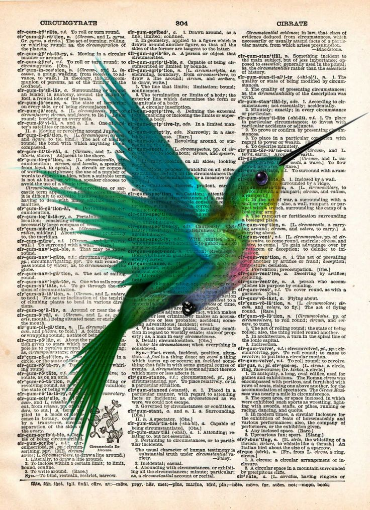 Hummingbird art print, bird art, childrens art, vintage dictionary print