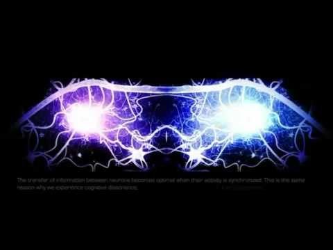 Теория всего! Сознание! Квантовая механика! Квантовая физика! Неврология!