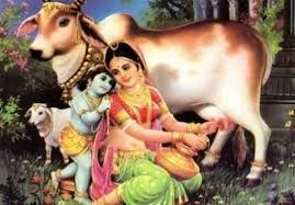 Image result for lord krishna cute images hd
