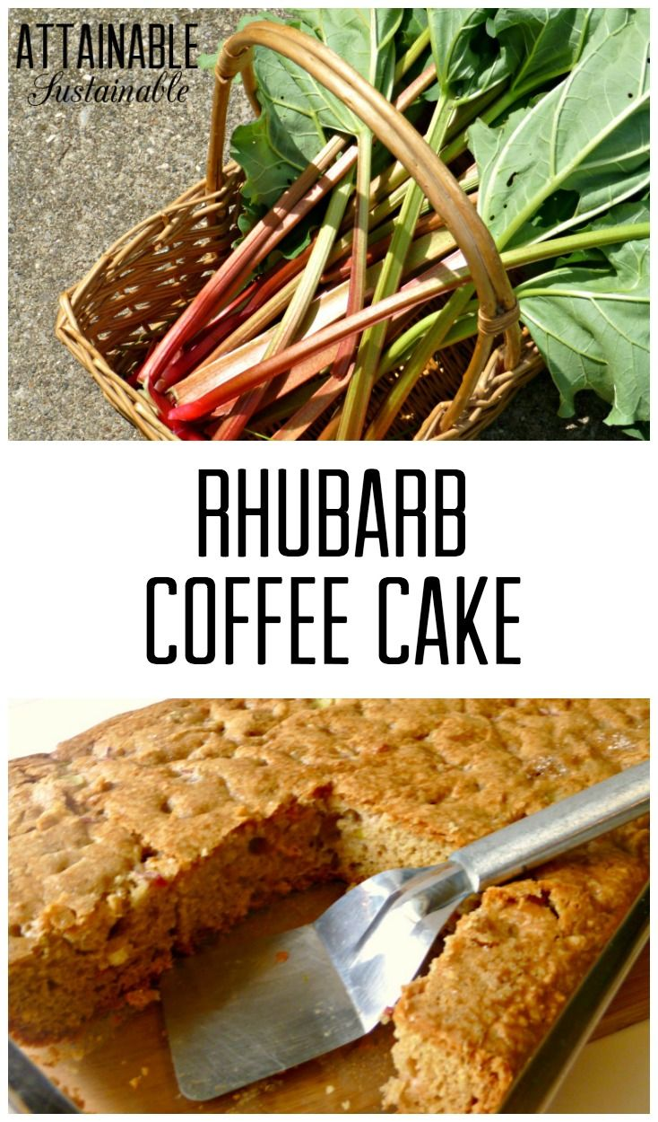 Spring means rhubarb is in season! If you're lucky enough to have a rhubarb plant in your yard or garden, make plans to turn some of it into this coffee cake!