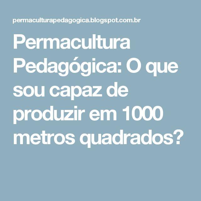 Permacultura Pedagógica: O que sou capaz de produzir em 1000 metros quadrados?
