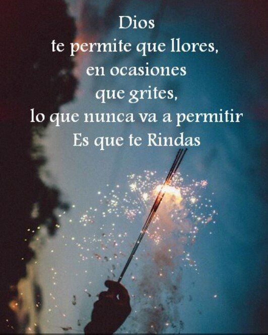 〽️ Dios te permite que llores, en ocasiones que grites, lo que nunca va a permitir es que te rindas.