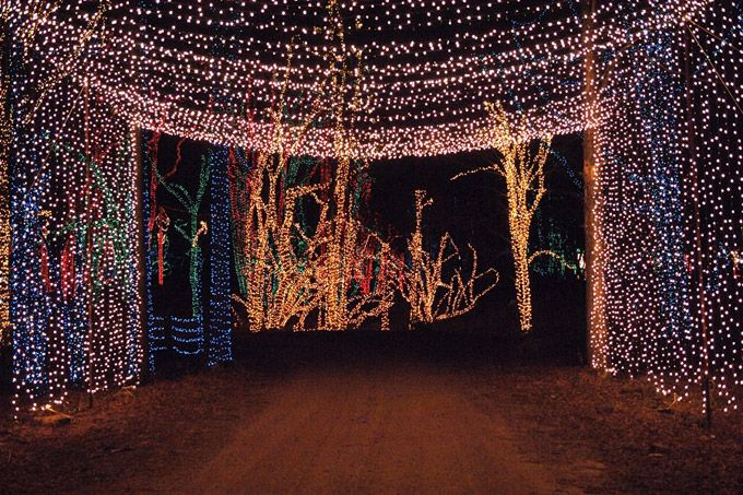 The Holiday Light Show Returns To Shady Brook Farm With Millions Of Lights  Throughout The Bucks County Attraction, November 22-January 4 - The Holiday Light Show Returns To Shady Brook Farm With Millions Of
