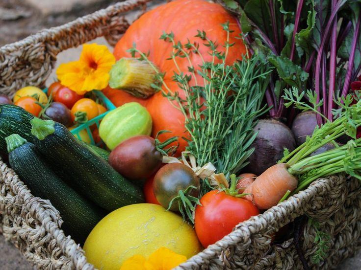 17 meilleures id es propos de jardin potager sur for Organiser son jardin potager