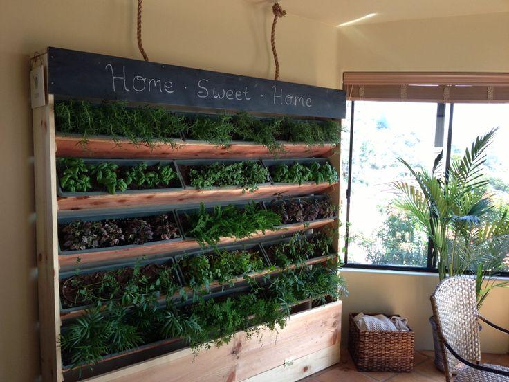 DIY 6 Foot Indoor Vertical Garden. DIY Kit. Contact billypease@gmail.com for inquiries :)