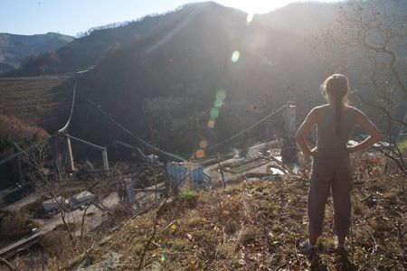 URGENT Action Alert —  Contact Governor  Governor Earl Ray Tomblin to ask for Climate Ground Zero Director Mike Roselle's immediate release from jail and that the sample of dust collected from a mountain top blasting site be analyzed by WV DEP — URGENT Action Alert