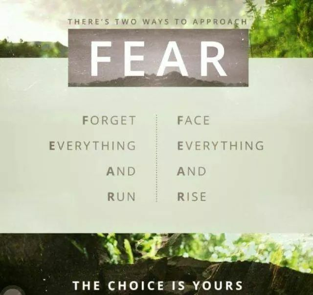 There are two ways to approach fear. Definitions by Zig Ziglar