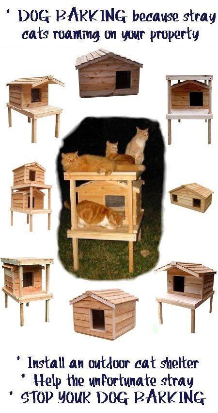 Another Tip To Stop Dog Barking.- Here is another tip that may help your dog stop barking. Many dogs get attracted by passing stray cats who roam about at night times. You can stop your dog barking on this count by erecting an insulated cedar wood outdoor cat house on your property. This would give shelter to the stray cats, stop them roaming about on your property and stop your dog from barking - www.catbedandtoy.com