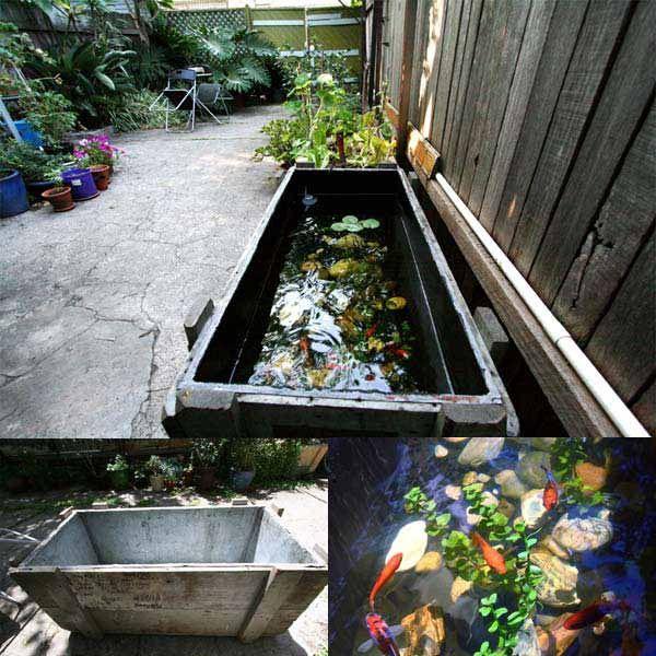 Réservoir de poissons en plein air-étang-woohome-20
