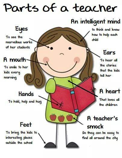 Parts of a teacher