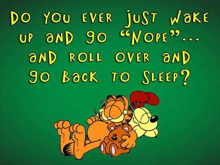 17 Best Images About Quotes On Pinterest: 17 Best Images About Garfield Quotes On Pinterest