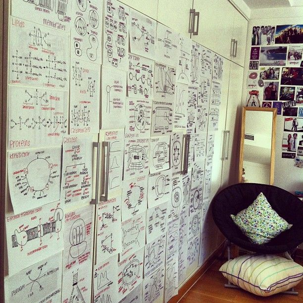 Decorating your walls with formulas and diagrams that you need to memorize. Such a good idea!