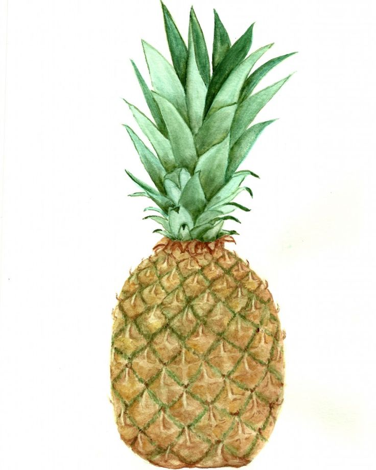 free Pineapple Watercolor Printable and pattern included!