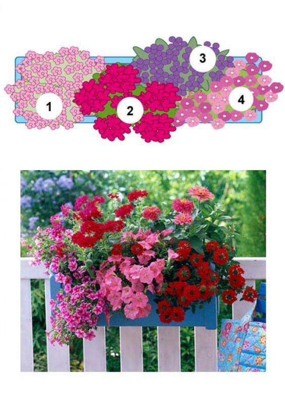 Blumenkasten mit Verbene, Geranie, Vanilleblume und Zauberglöckchen