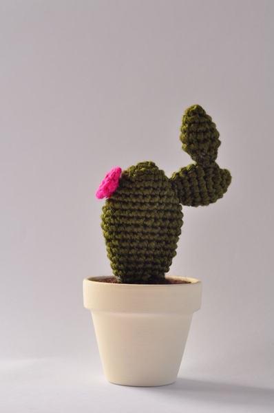 Paletta Cactus