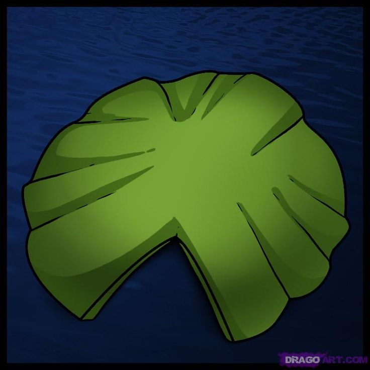 How to Draw a Lily Pad, Step by Step, Flowers, Pop Culture, FREE Online Drawing Tutorial, Added by Dawn, January 12, 2010, 2:51:22 pm