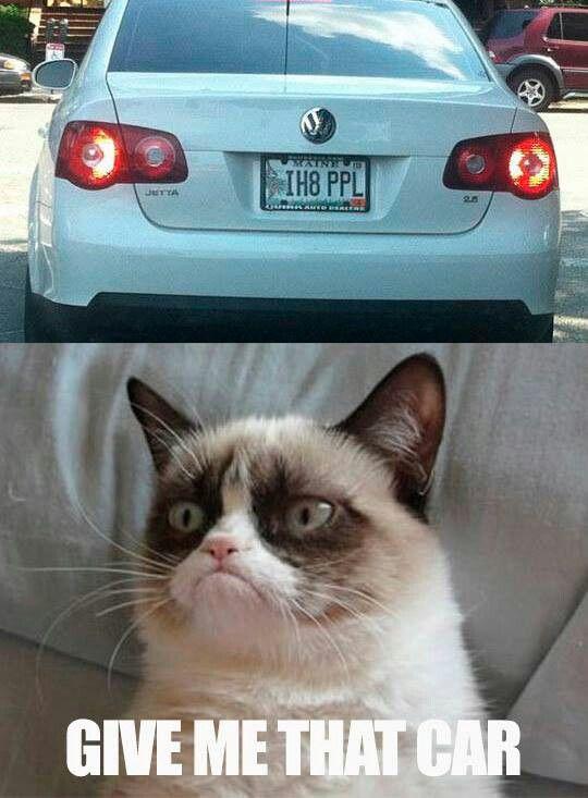 17 best images about grumpy cat