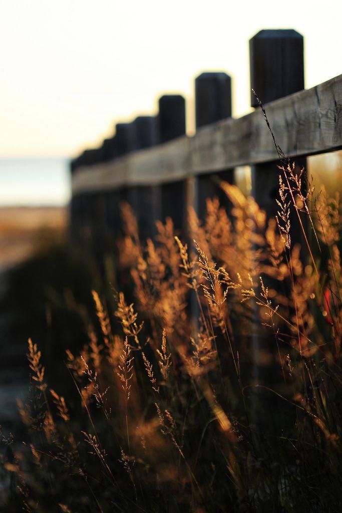 HFF | Flickr - Photo Sharing!