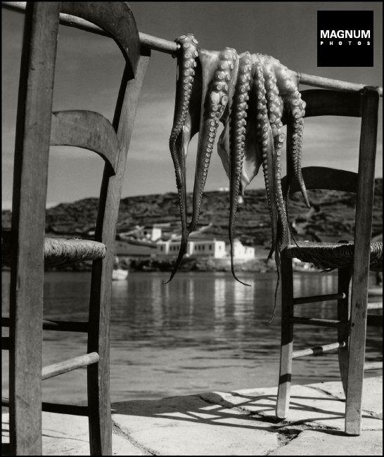 GREECE Mykonos1938 octopus-HERBERT LIST